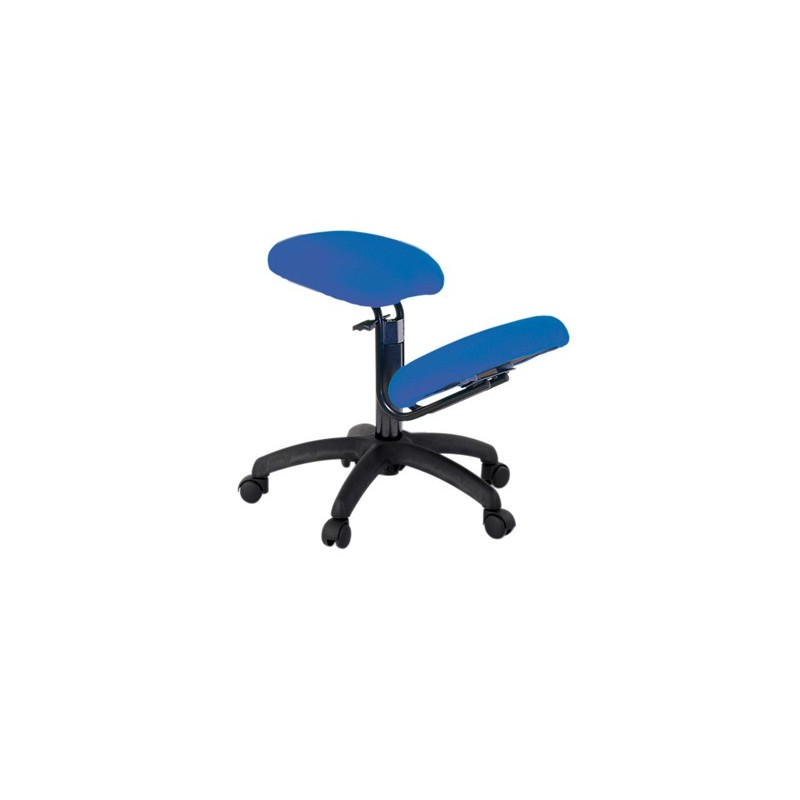 Ecopostural siege ergonomique s2602 chaise ergonomique for Chaise ergonomique