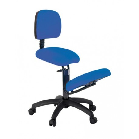 Ecopostural siege ergonomique s2604 chaise ergonomique for Chaise ergonomique