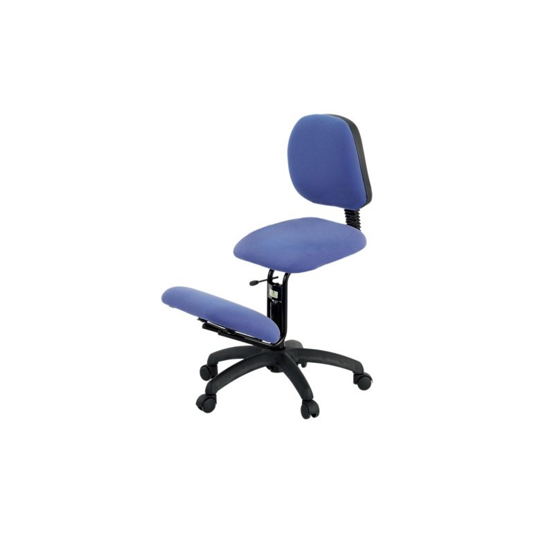 Ecopostural siege ergonomique s2607 chaise ergonomique for Chaise ergonomique